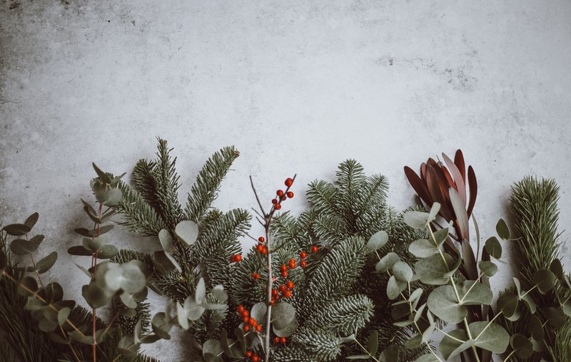 Reel Paper Dreaming of a Green Christmas? Holiday Decor Ideas Made with Sustainable Materials