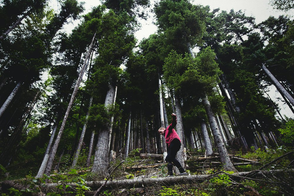 Exploring forests responsibly is crucial to learning how to save trees.