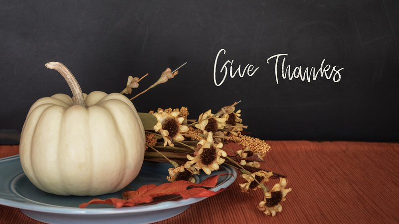 Reel Paper The True Meaning of Thanksgiving: 5 Humanitarian Organizations Honoring Turkey Day the Right Way