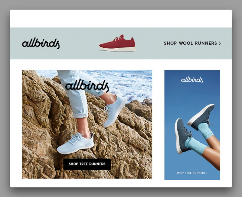 allbirds-google-display-ads-example