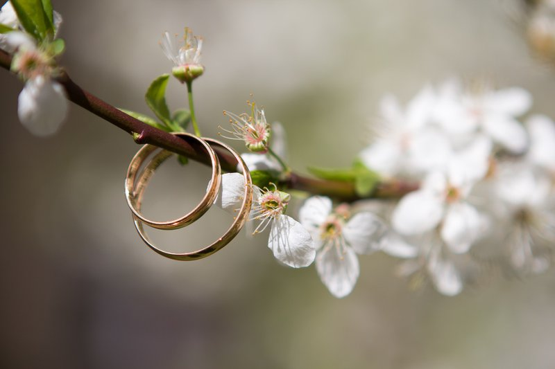 planning a wedding in france - rings on spring blossom