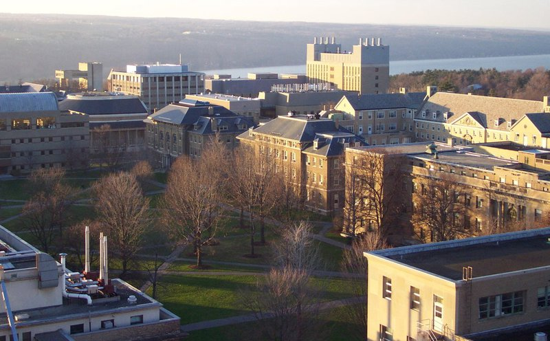black students at cornell article photo of Cornell quad