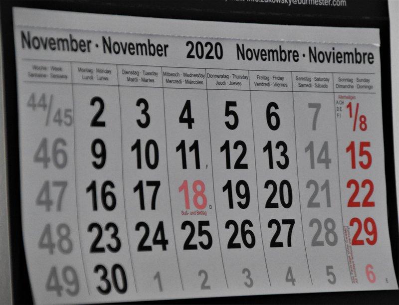 Wall Calendar November 2020