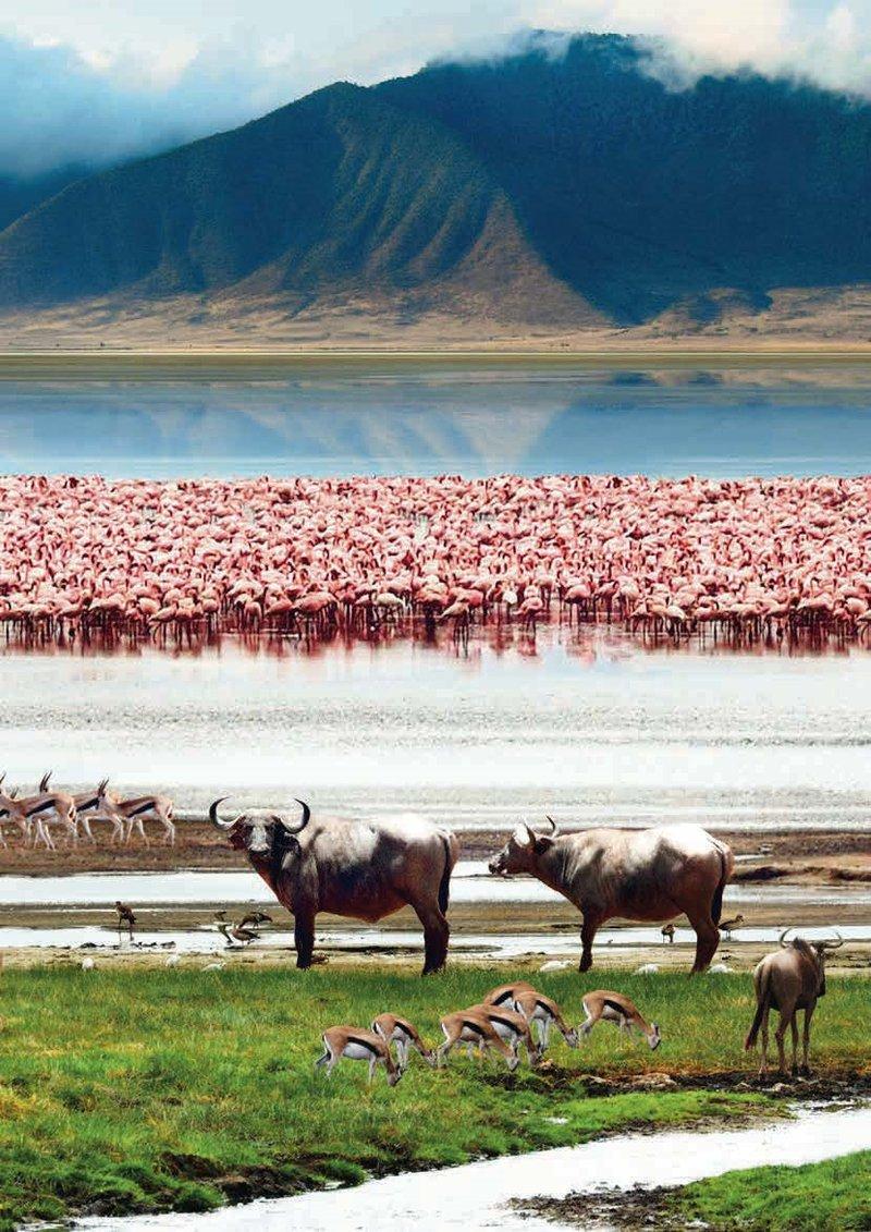 De meest 11 exotische bestemmingen