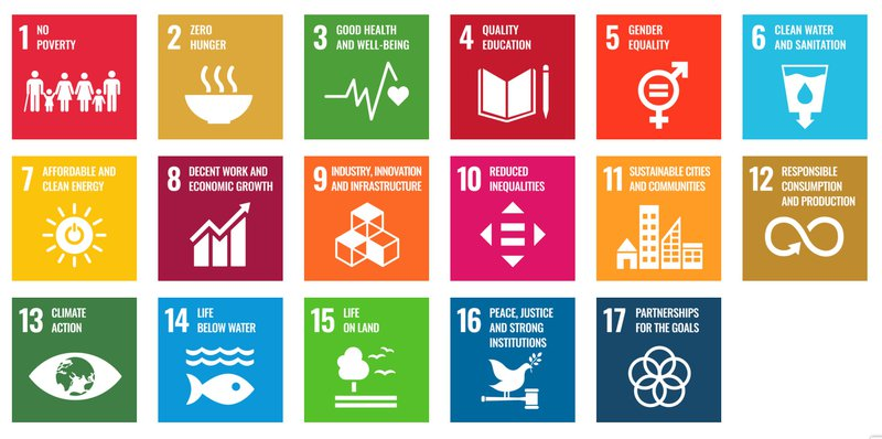 SDGs for businesses: What are sustainable development goals?