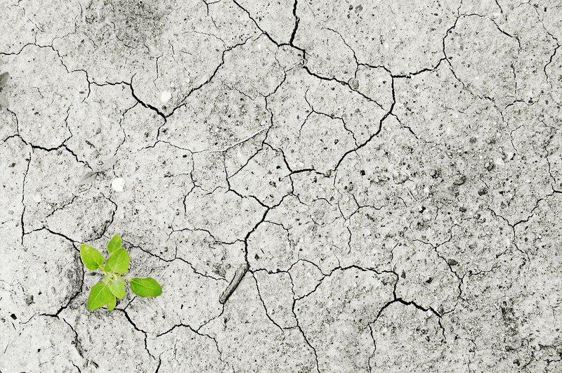 Comment réussir ou échouer un Plan Climat?