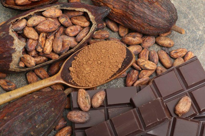 Theobromine en chocolade