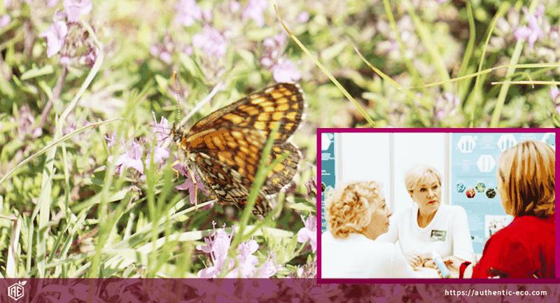 Развитие натуральной косметики в России- Interview Authentic Eco
