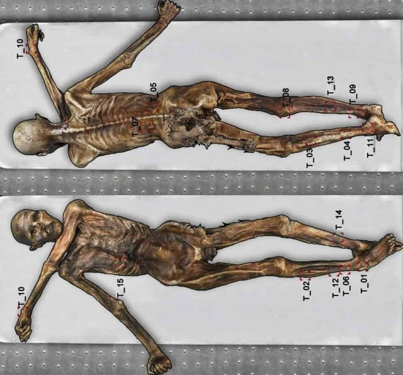 Tattooed Mummies