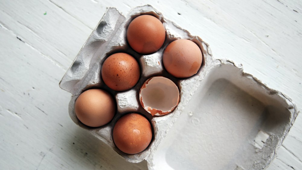 Brown eggs in egg carton - an ingredient of homemade pet food