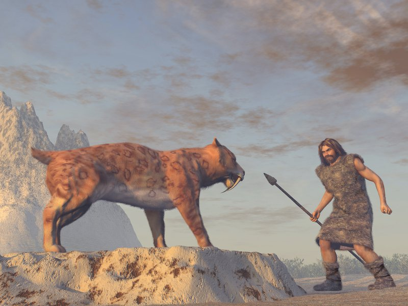 Caveman facing danger from a Saber Tooth Tiger.