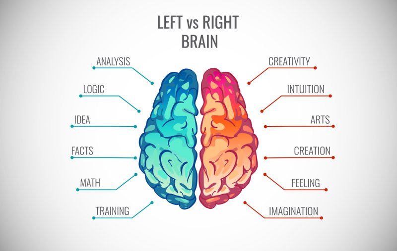 Image of left and right hemispheres of brain to indicate which areas they control. Journaling helps with both.
