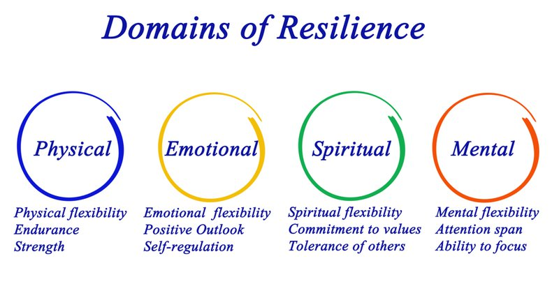 Image showing the domains of resilience to survive in a VICA world