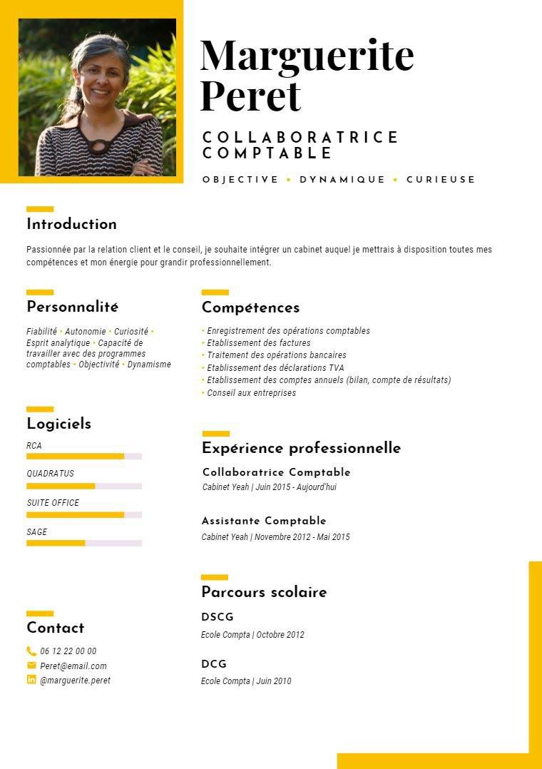 Modèle de CV Collaborateur Comptable