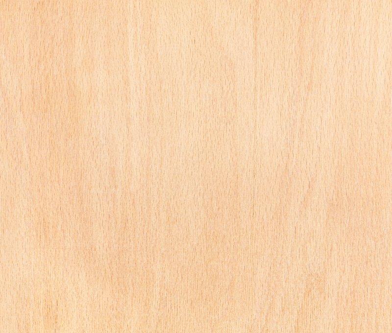 Soorten hout: beuk