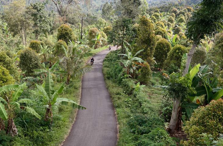 Getting Around Bali