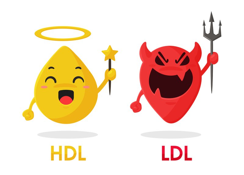 cartoon graphic of angel HDL and devil LDL