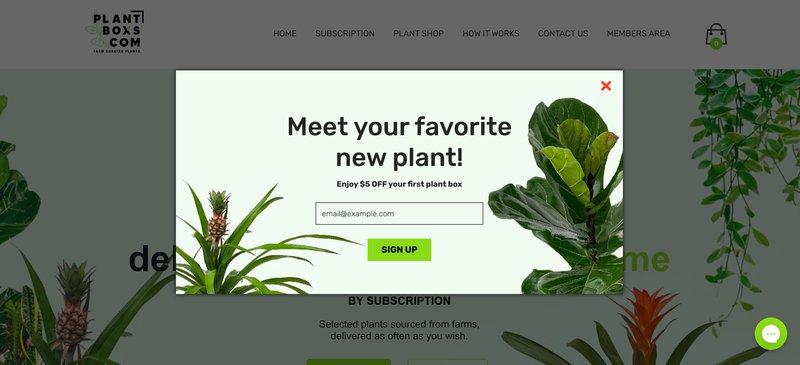 plantboxs
