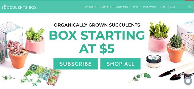 succulent box best gardening affiliate programs