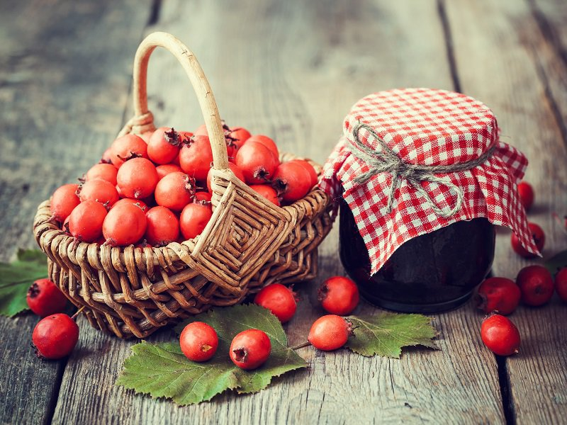 heart health hawthorn berry ketchup