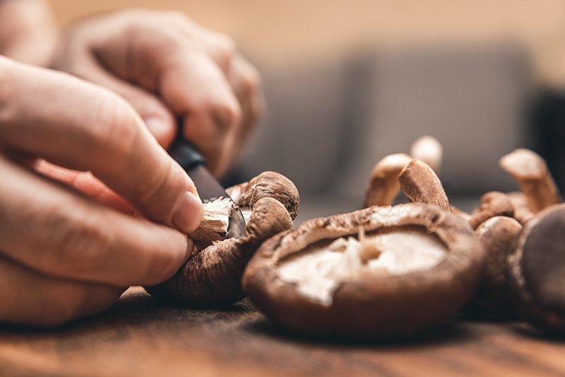 shiitaki mushroom recipe for depression