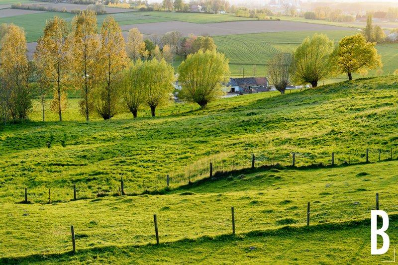 Een vespa-toer of fietstocht door de Vlaamse Ardennen