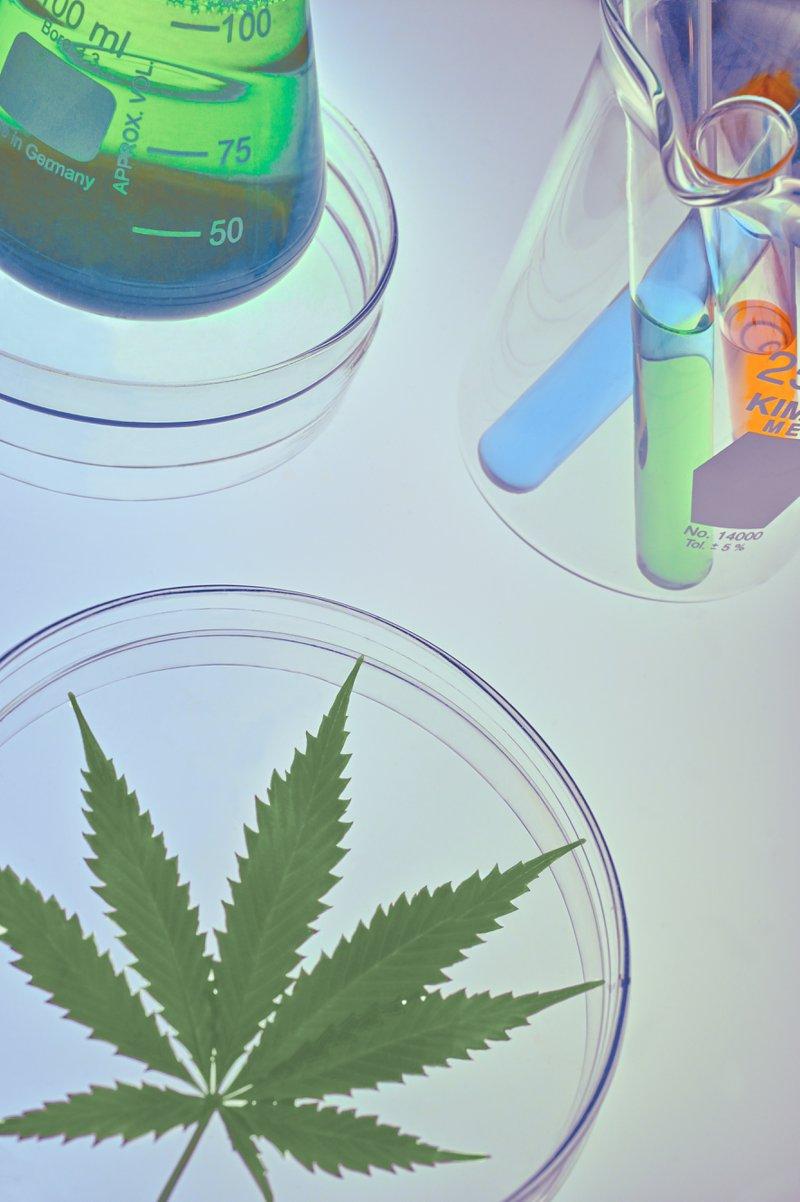 Medical-benefits-of-marijuana