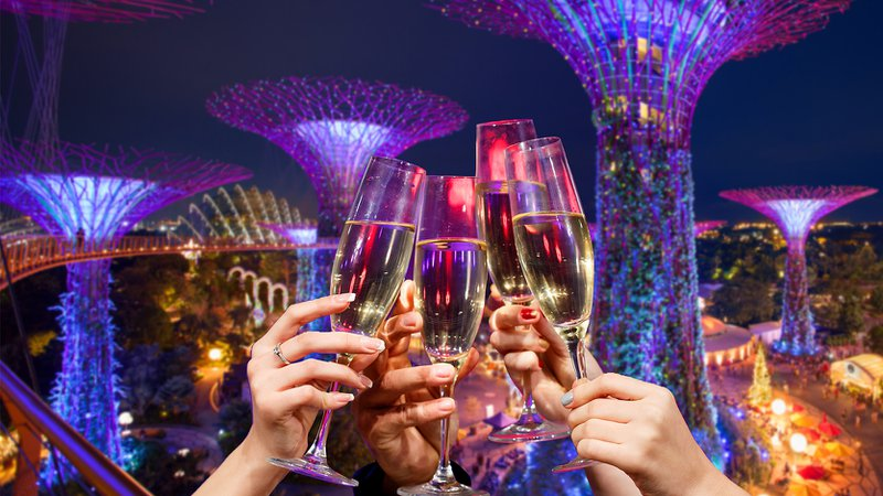 Champagne glasses clinking at Gardens by the Bay, Singapore