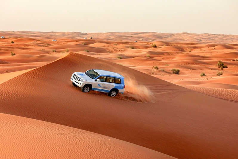 Abu Dhabi desert safari on sand dunes
