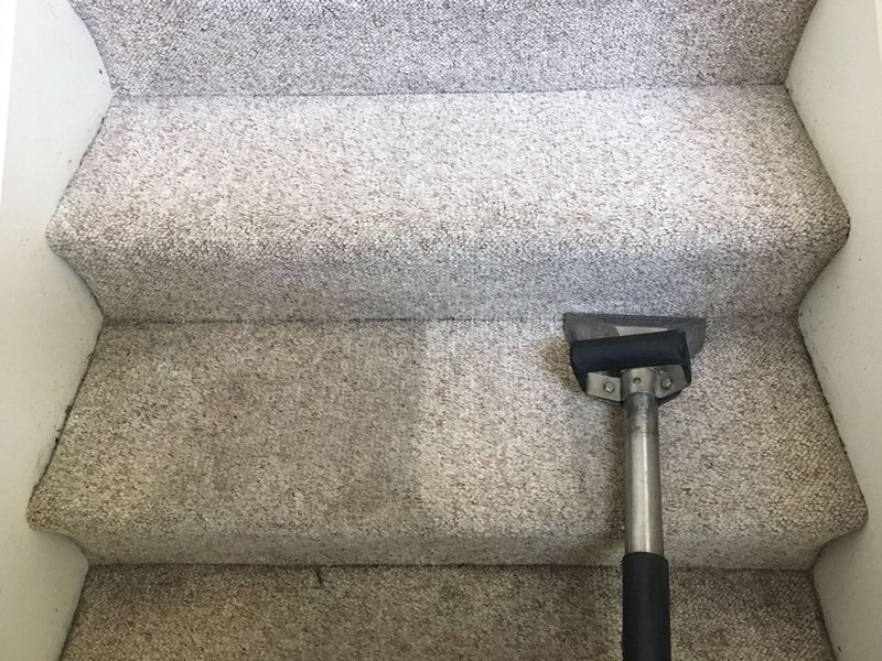 Carpet Cleaning Business Income: A Guide to Solid Incomes