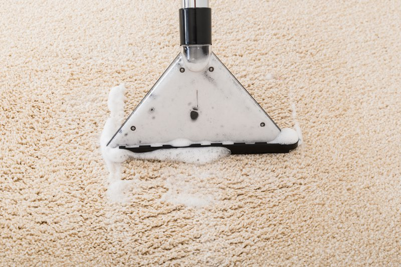 Is Professional Carpet Cleaning Worth It?
