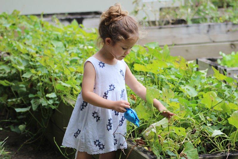 Toddlers Outdoor Activities