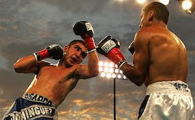 Sports Stars Boxing