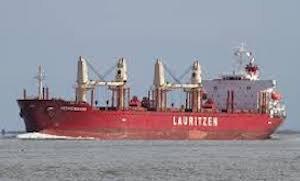 shipping industry bulk carrier