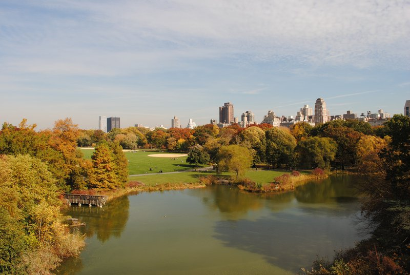Free Things to do in New York City - Central Park