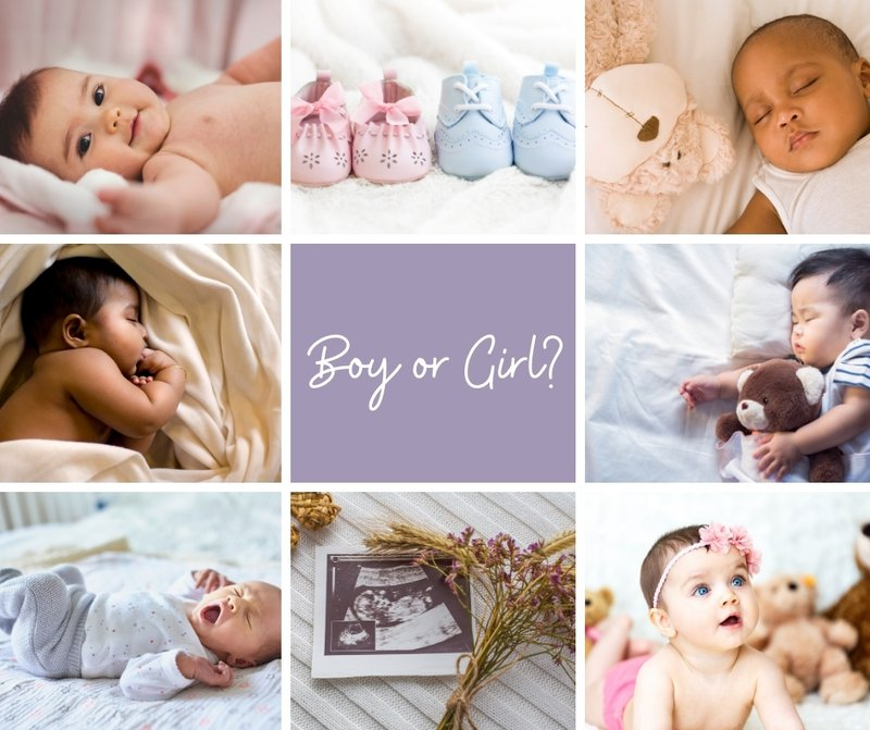 Boy or Girl? How Early can you find out the gender of your baby. Multiple Images
