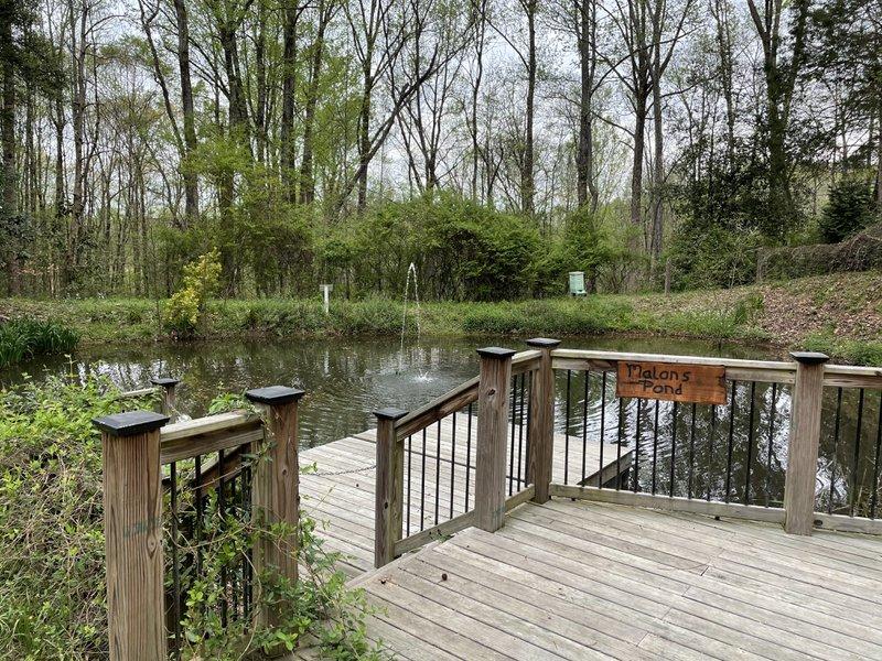 Malons Pond