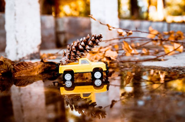 Yellow pickup car toy with autumn leaf driving over water pond outside. Copy space