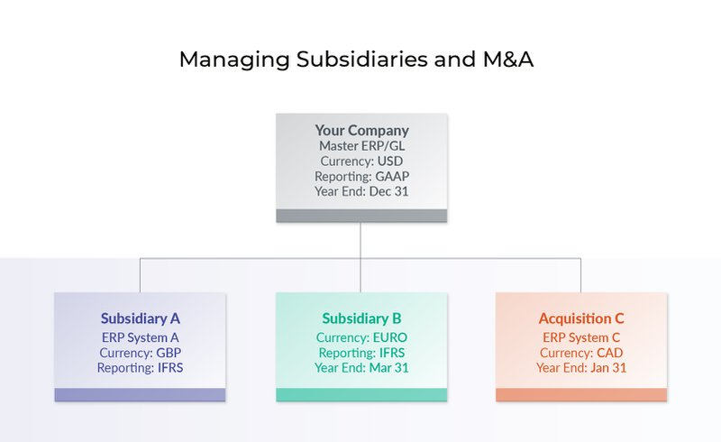 Managing Subsidiaries and M&A