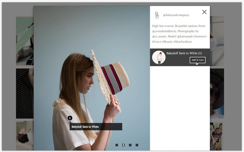 Shop Instagram Feed & UGC - add to cart feature
