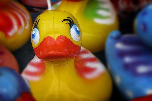 PTA summer fair - rubber duckies