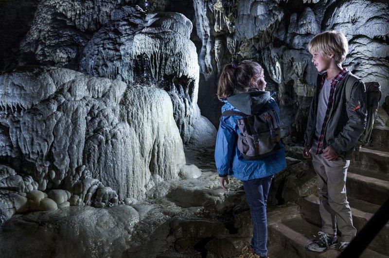 Domaine des Grottes de Han - Han-sur-Lesse