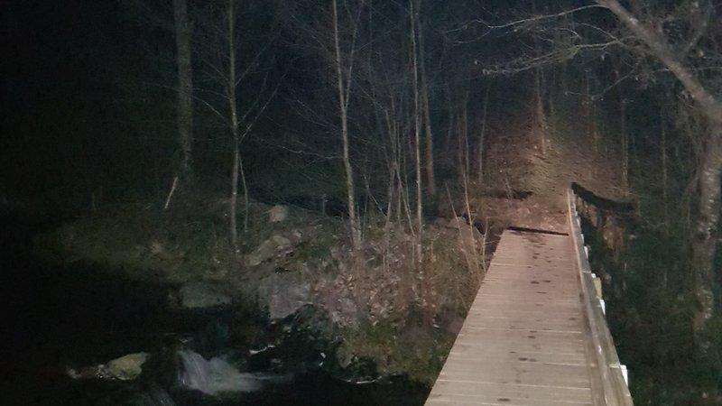 Nachtwandeling in de Ardennen