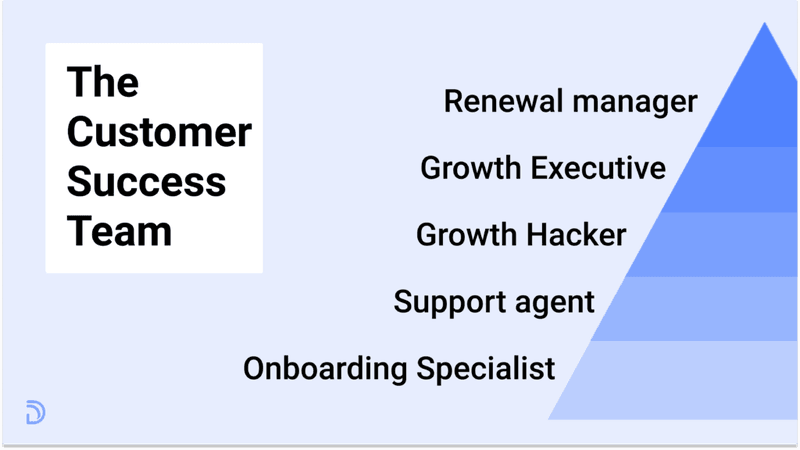 The Customer Success Team and it's structure