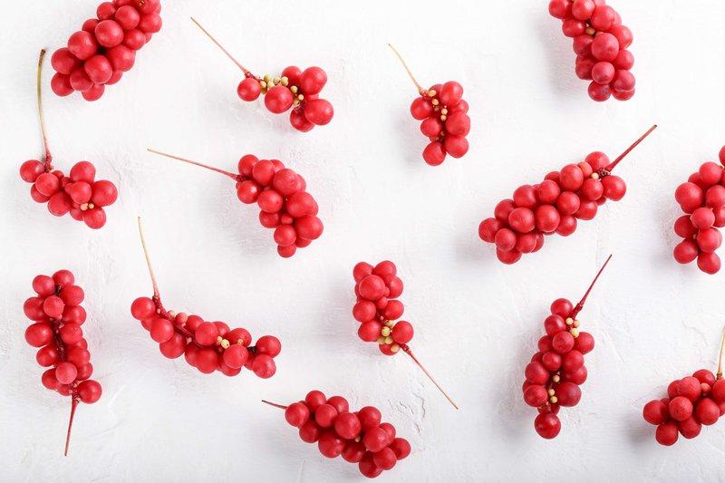 Schisandra Chinensis Berry - Adaptogens