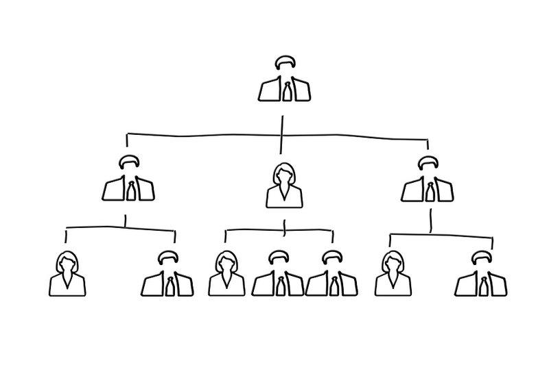 organogram - schets organisatorische structuur