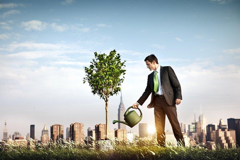analogia de um empresário regando uma planta, como se estivesse cuidando da empresa dele
