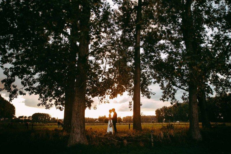 Bruidspaar in de natuur bij zonsondergang - Lux Videography - Goede huwelijksvideograaf - House of Weddings