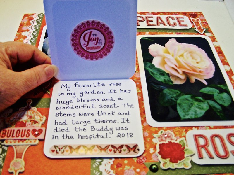 Journaling card on scrapbook page