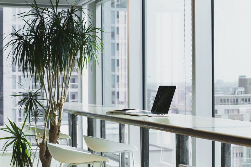 Office space with tree and long office bar style table along a window, with one laptop and notebook on it / Photographer: Alesia Kazantceva   Source: Unsplash